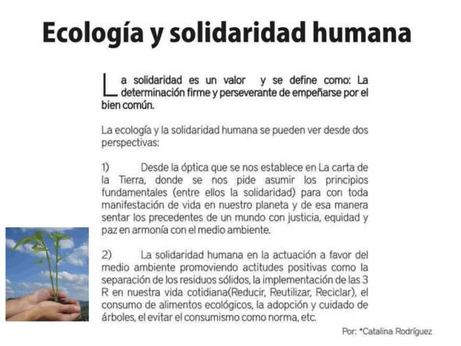 Eco y Solidaridad 20.12