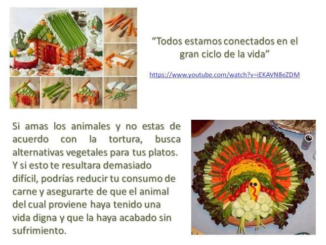 Platos Vegetales